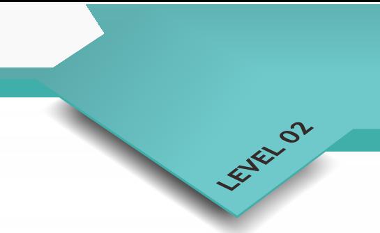 layer_2